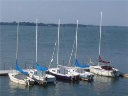 Docked sailboats